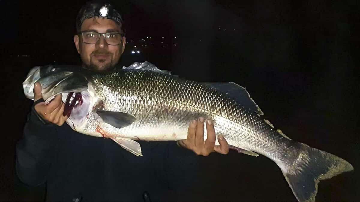 Un pescador captura una monstruosa lubina de nueve kilos en Galicia
