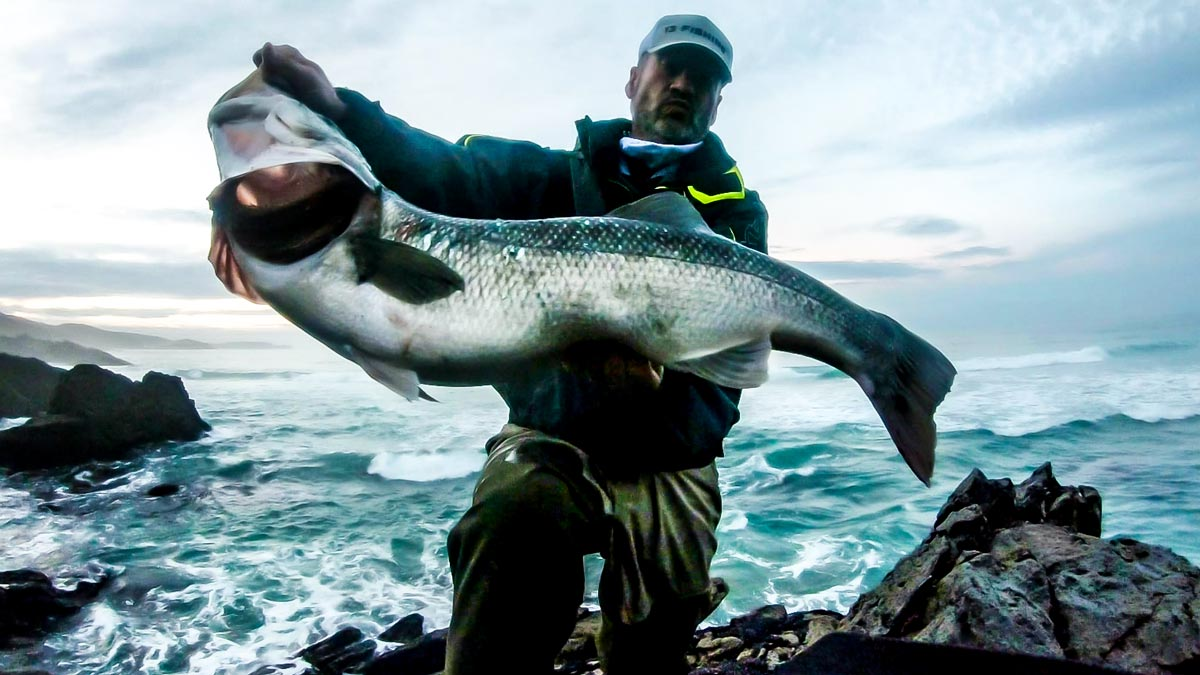 El pescador, con la descomunal lubina. © G. P.