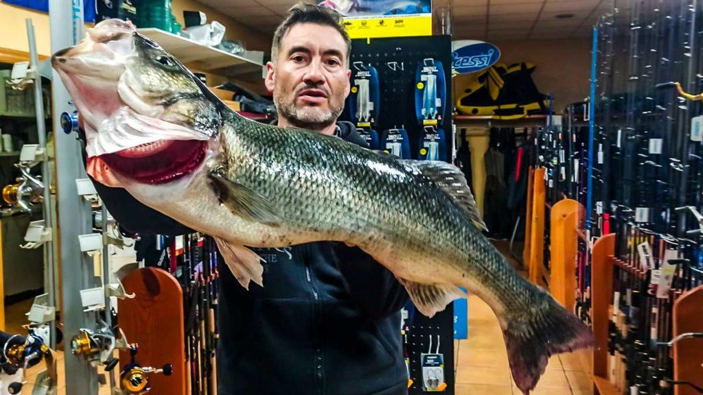 Otra imagen del pescador con la lubina. © G. P.