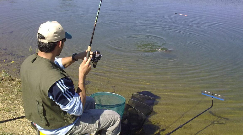Montajes para la pesca a la inglesa
