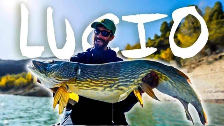 El pescador, durante la pesca de un monstruoso lucio. @ YouTube