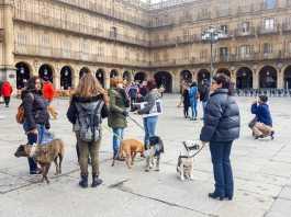 manifestaciones contra la caza