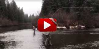 mannequin-challenge-pescadores
