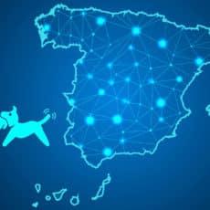 Esta es la situación actualizada de la caza en España para el próximo puente de diciembre (horarios, restricciones, movilidad…)