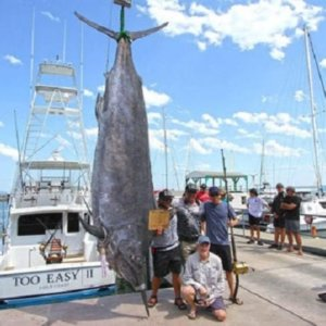 Un pescador captura un enorme pez de casi 650 kilos con un señuelo hecho a mano