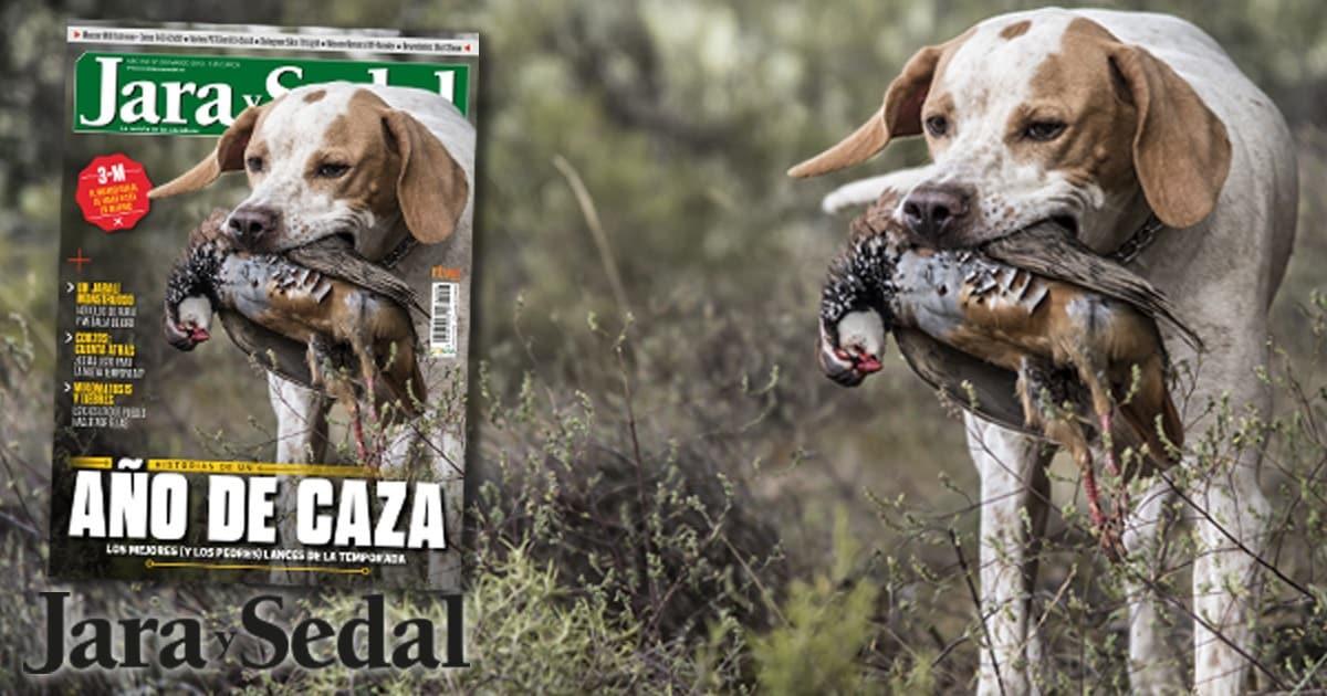 En el número de marzo de Jara y Sedal te contamos ¡nuestros mejores y peores lances!