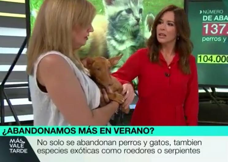 Mati Cubillo y Mamem Mendizábal en el programa 'Más Vale Tarde' de La Sexta.