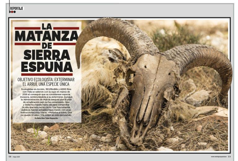 reportaje de la matanza de sierra espuña