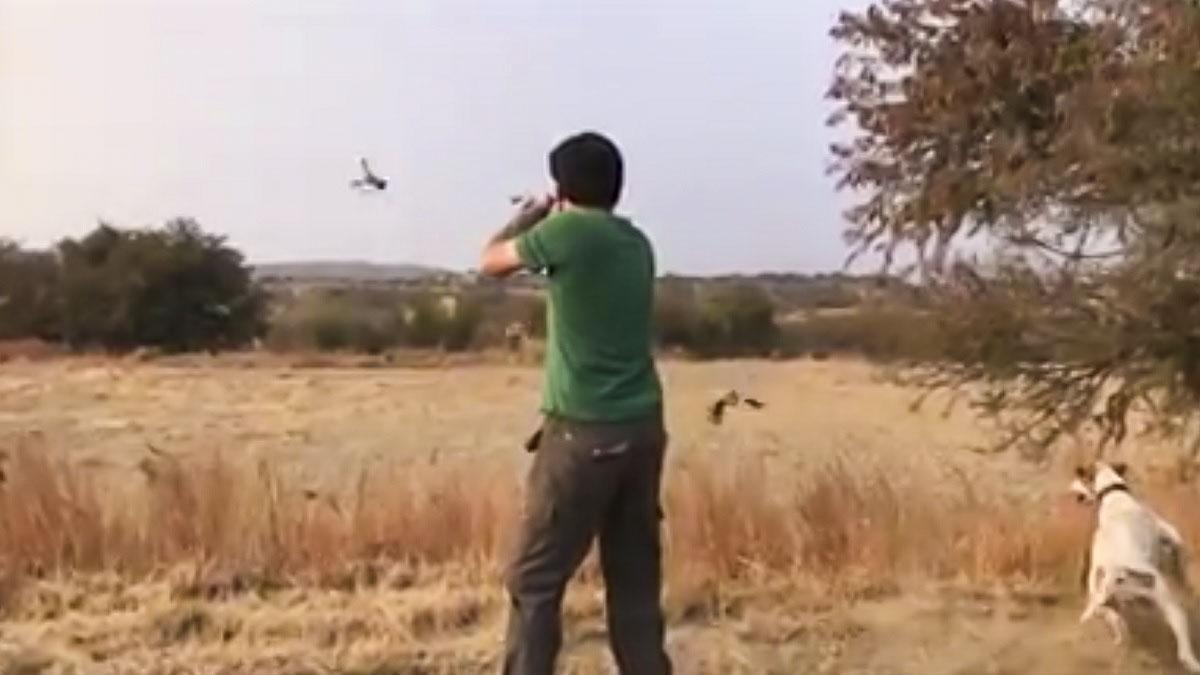 La habilidad de este cazador para cazar tres perdices a perro puesto te dejará perplejo