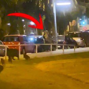 Una mujer cae con una niña en brazos frente a una piara de jabalíes en Barcelona