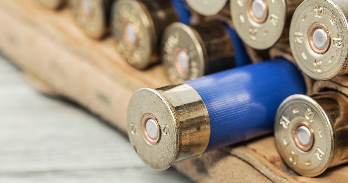 La UICN rechaza prohibir la munición de plomo en todo el mundo