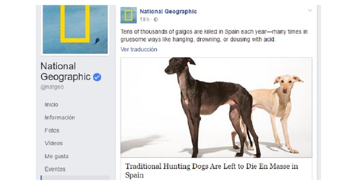 National Geographic publica un artículo cargando contra los cazadores españoles