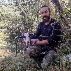 Nel Cañedo: «Los animalistas quieren convertir el medio rural en el parque de atracciones de unos pocos»
