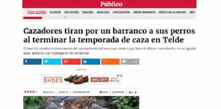 noticia publico.es.