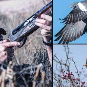 6 novedades de Solognac para la caza de zorzales y palomas que arrasan esta temporada
