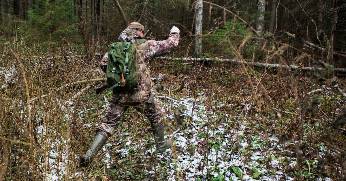 Nueve lecciones que aporta la caza a nuestra vida diaria