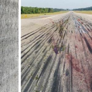 Un avión atropella a un ciervo en pleno aterrizaje y las imágenes viralizan