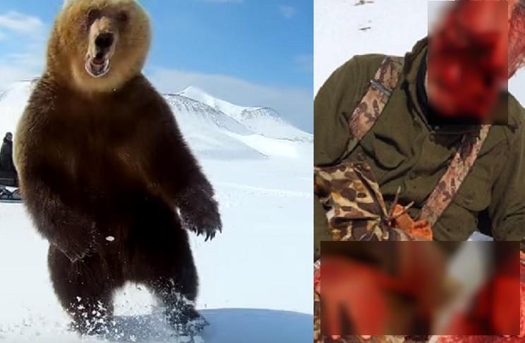 Te contamos la verdad sobre el vídeo del oso que arranca la cara al cazador