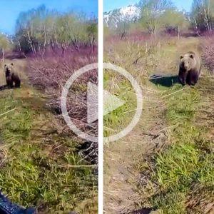 Un oso intenta cazar a un cazador y él reacciona como hay que hacerlo