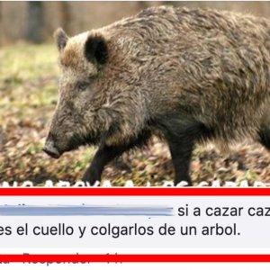 Un simpatizante de PACMA anima «cazar cazadores, cortarles el cuello y colgarlos de un árbol»