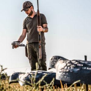 Paloma torcaz: cómo preparar una tirada de caza en media veda