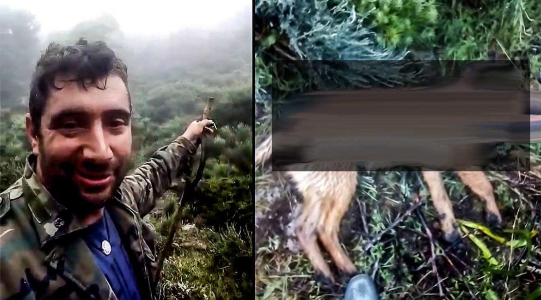 Los jabalíes matan la perra de este pastor, que explota en la redes sociales: «Hay demasiados»