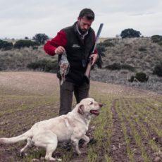 Los cazadores extremeños solo podrán cazar en su municipio de residencia habitual