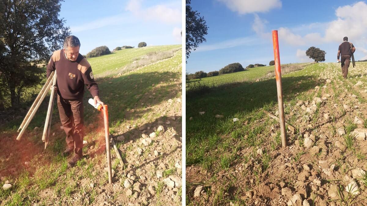 Lección de ecologismo de estos cazadores: ayudando a las perdices hasta el día de Nochebuena