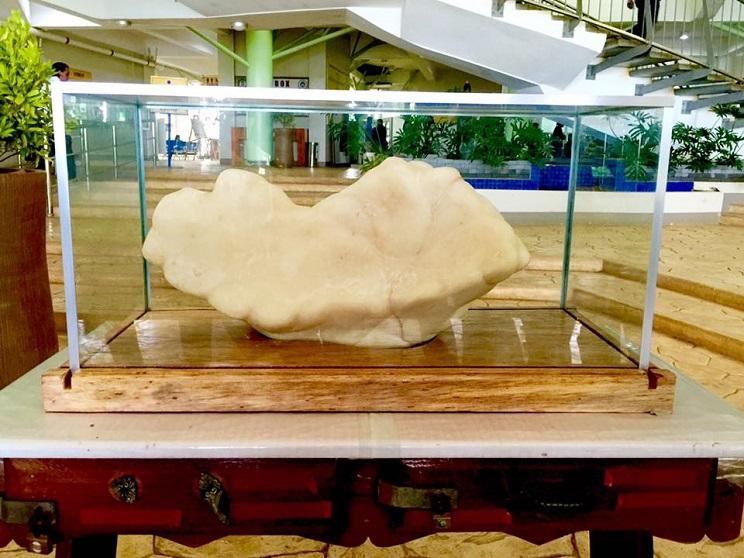 perla más grande del mundo
