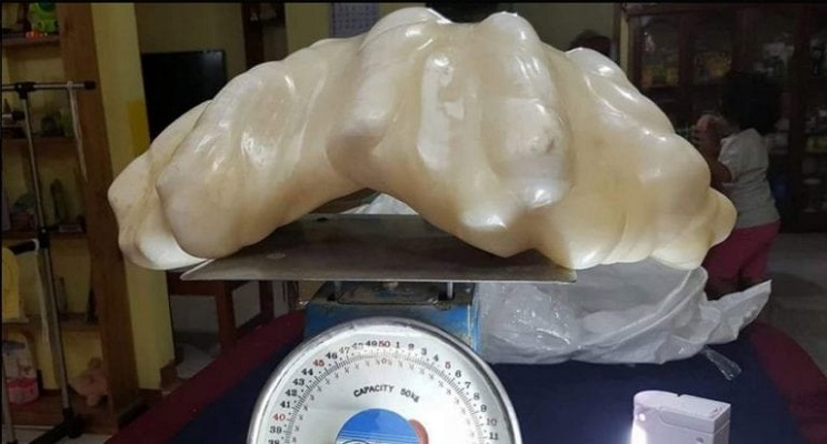 perla mas grande del mundo