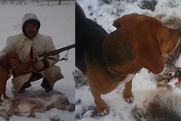 Un perro dispara accidentalmente un arma y mata a un cazador