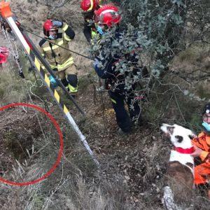 Espectacular rescate de un perro de caza que cayó a un pozo en Huesca