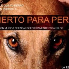 Un Ayuntamiento de Valencia se gasta casi 8.000 euros en un concierto para perros