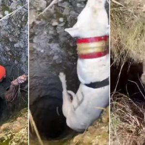 Un cazador se juega la vida por sus perros bajando a un hondo pozo a rescatarlos
