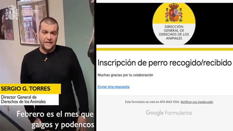 Sergio García Torres junto a una imagen del formulario. © Twitter