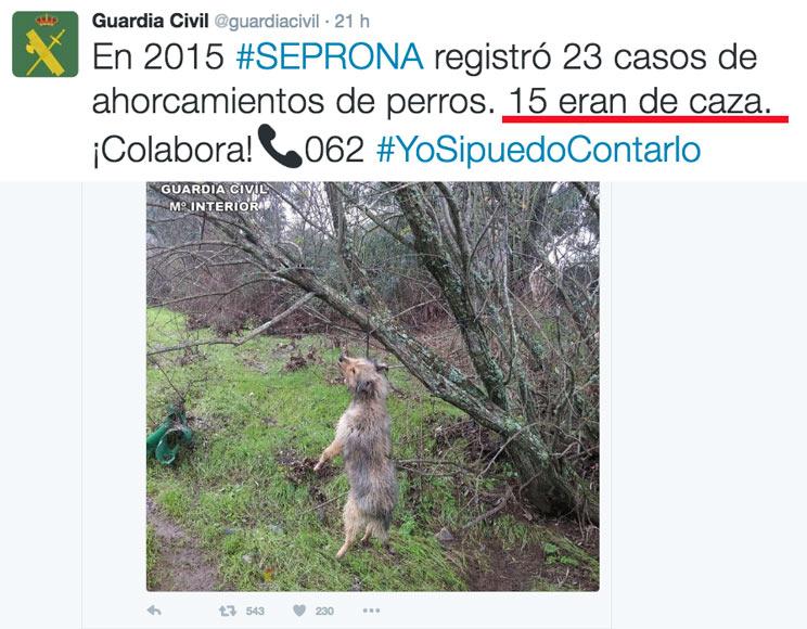 perros de caza ahorcados