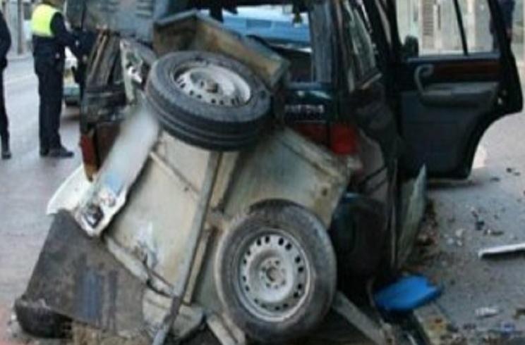 Un conductor ebrio mata a dos perros de caza en Elche