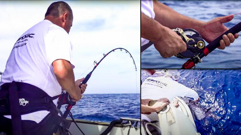 Varias imágenes del vídeo de la captura del atún a brumeo.
