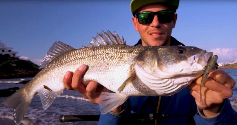 El youtuber Sam Bosch, creador del canal de YouTube Lured Fishing, con una lubina.