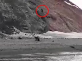 pescador-muere-ataque-oso