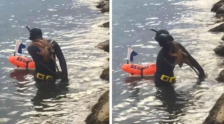 Un pulpo se agarra a la espalda de un pescador y protagoniza esta desternillante escena