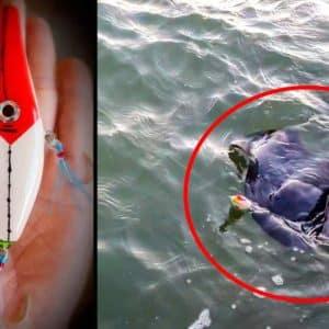 Un pescador fabrica un señuelo que imita a un pez volador y recibe esta peligrosa picada en Alicante