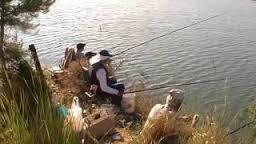 pescando alburnos
