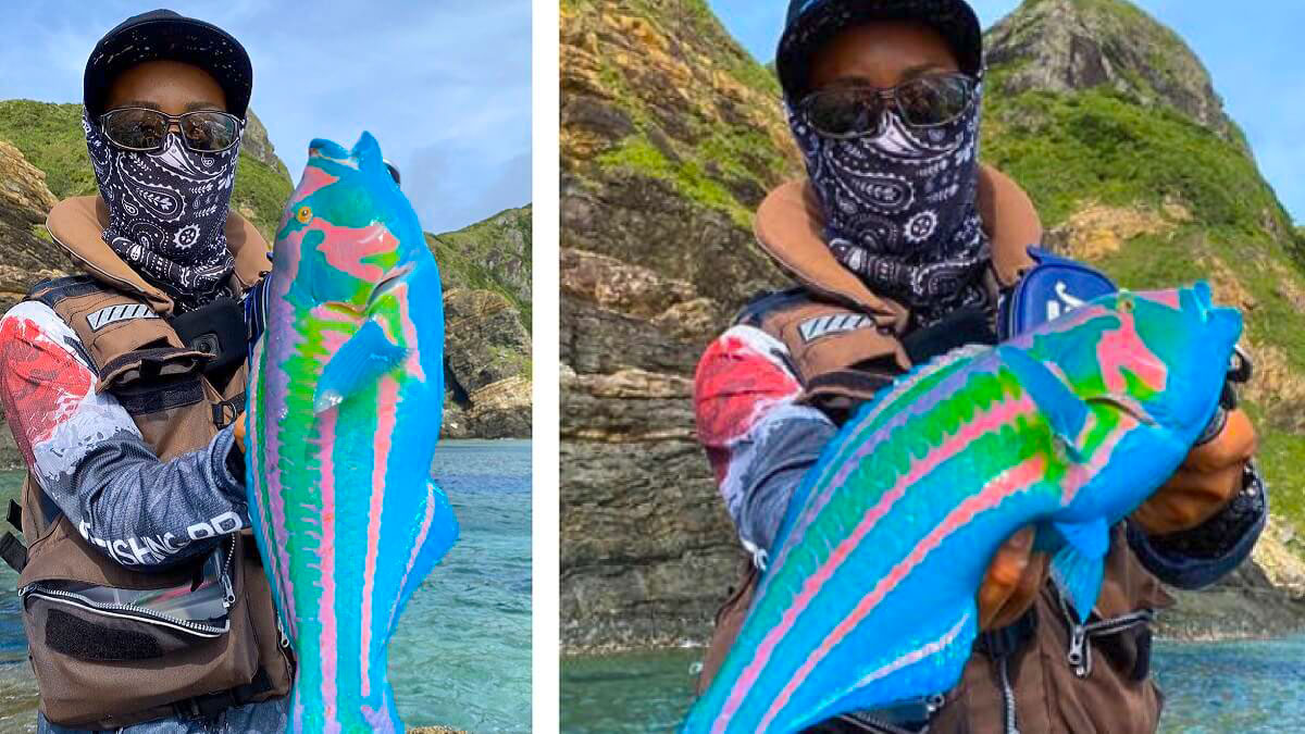 Lanza su caña, pesca algo, y cuando recoge el sedal saca a este extraño pez
