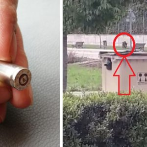 La Policía dispara a un jabalí y la bala rebota e impacta contra una ventana en Navarra