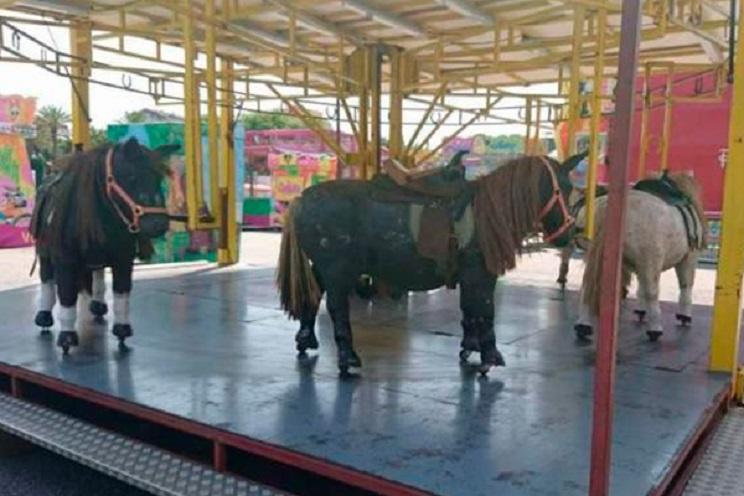 Animalistas denuncian «maltrato animal» por el uso en un tiovivo de ponis ¡de madera!