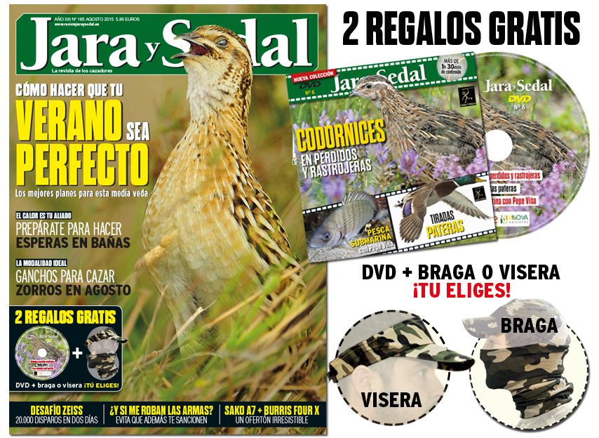 portada+REGALOS-165
