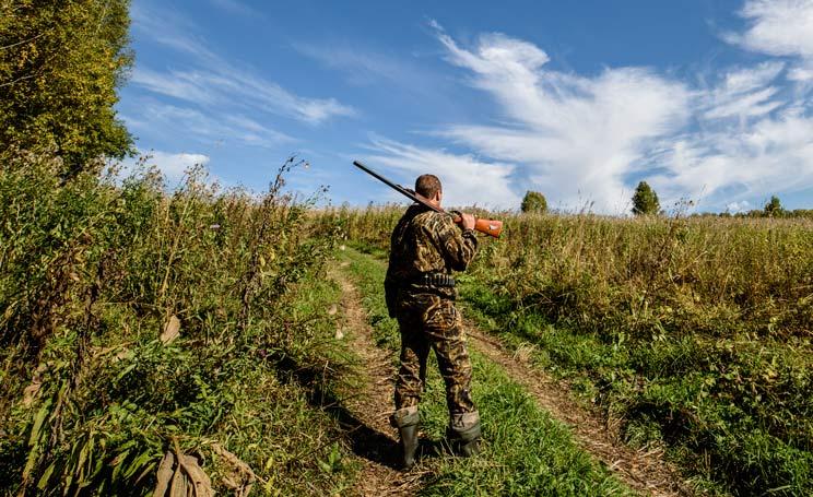 «Estudian prohibir la caza los domingos», el último bulo cinegético en España