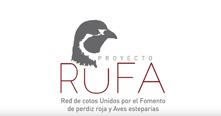proyecto rufa