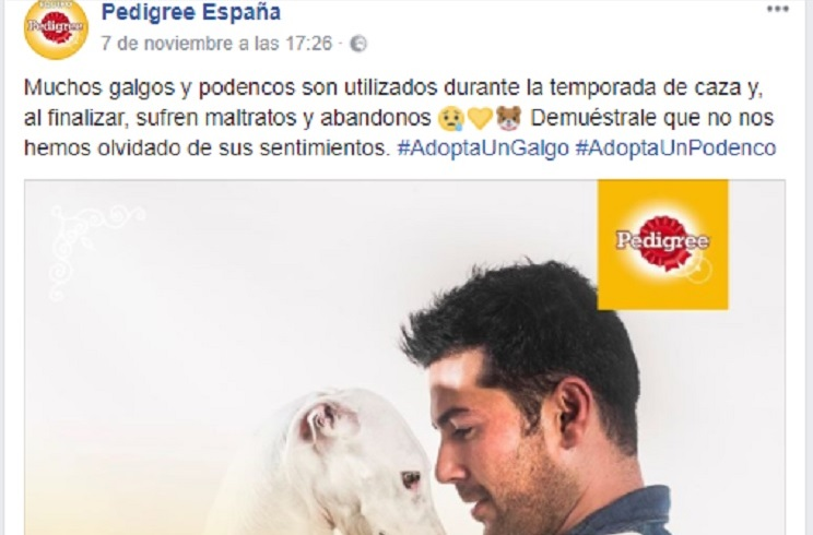 Pedigree rectifica sobre su post de los cazadores